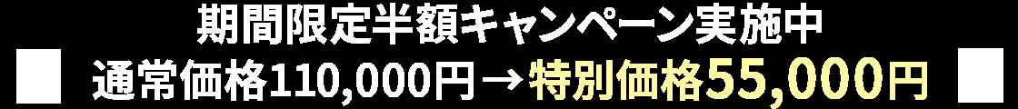 期間限定半額キャンペーン実施中 通常価格110,000円→特別価格55,000円